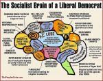 Liberal Brain 150x118 In der rosaroten Gehirnwindung